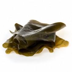 Листовая ламинария / Живые водоросли, 3 кг (R-cosmetics)